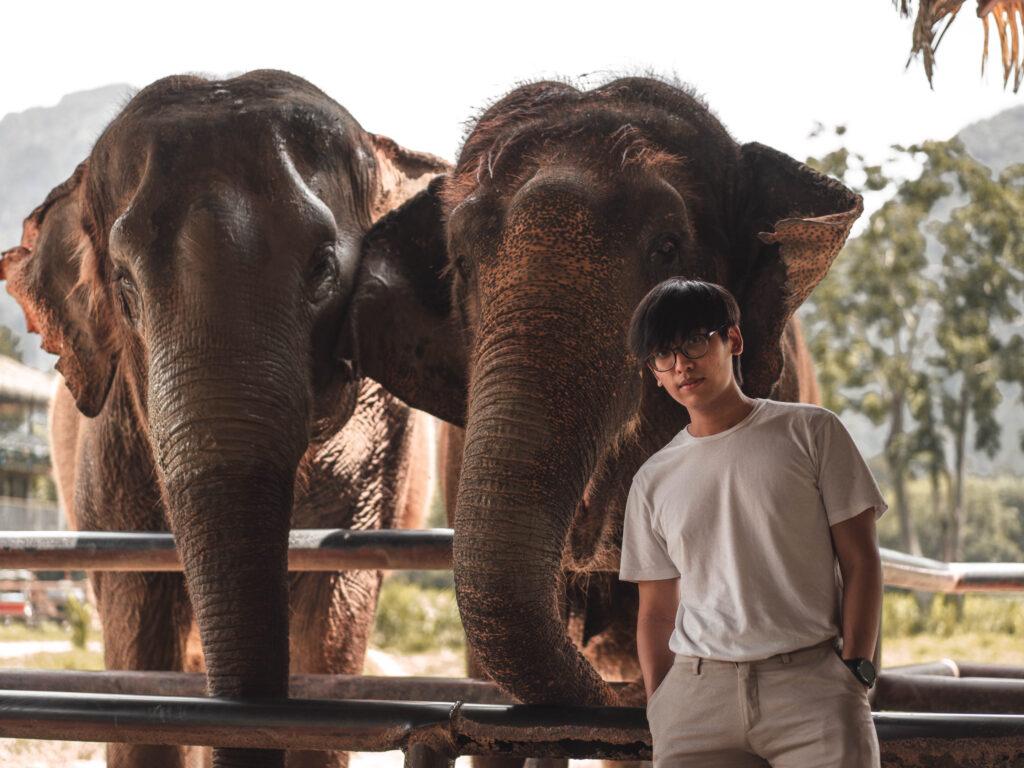 ที่เที่ยวสุราษ คาเฟ่ช้าง